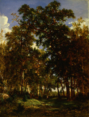 The Forest Floor (Dessous de Bois) (Woodland Scene)