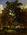 The Forest Floor (Dessous de Bois) (Woodland Scene)